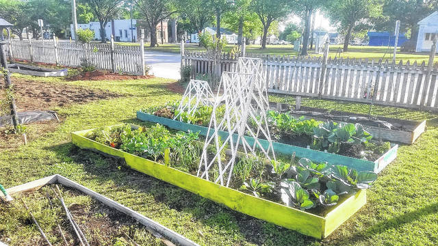 A community garden in Roseboro that is in its third spring of existence.