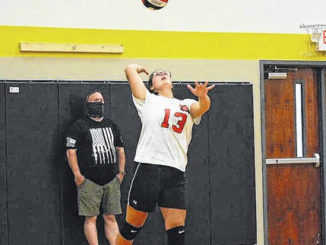 Mintz's Britney Christianson serves up the ball during this week's battle against Columbus Christian.